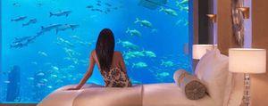 Foto: Una habitación a cien mil leguas de viaje submarino