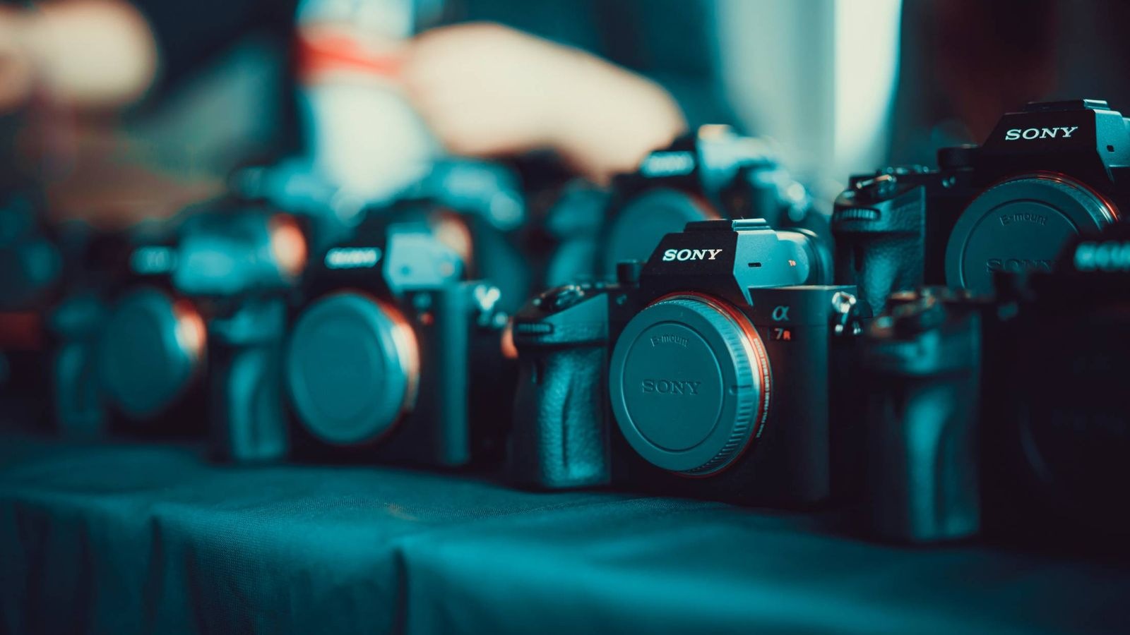 Foto: Si eres novato toma nota antes de comprar tu cámara. (A. Durov / Unsplash)