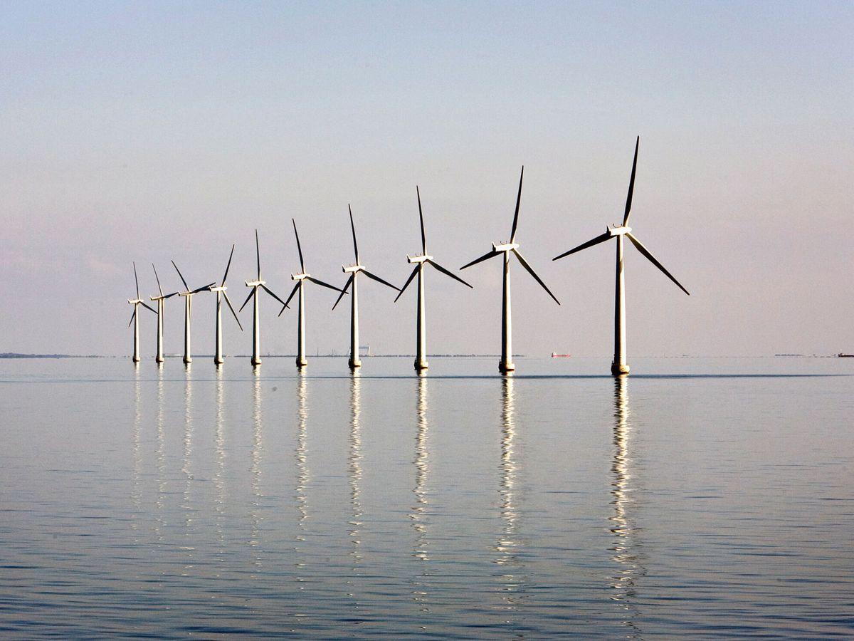 Foto: Una planta de eólica marina. (Reuters)