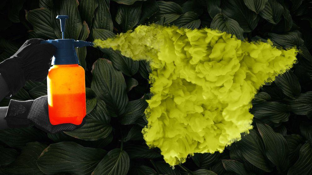 La UE prohibirá en 2020 el pesticida más usado en España por su peligrosidad