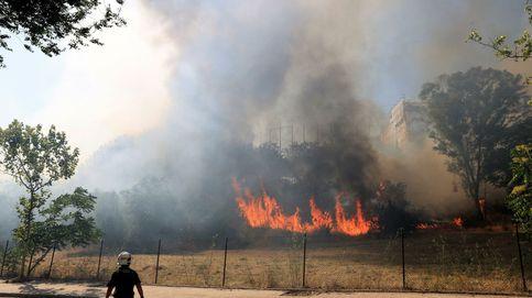 Los restos de Filomena: segundo incendio en la Dehesa de la Villa (Madrid) en tres días