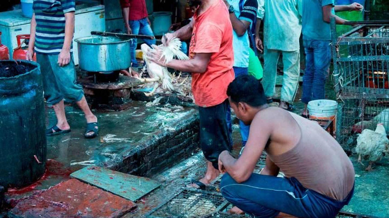 Un mercado húmedo, fuente de contagios (Igualdad Animal)