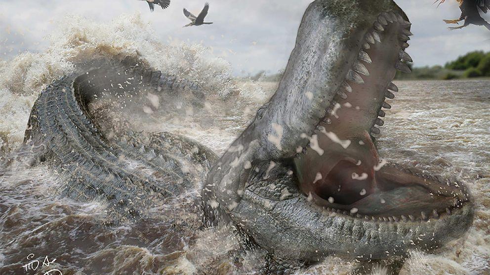 Expertos alertan de la sexta extinción masiva y el peligro para el hombre