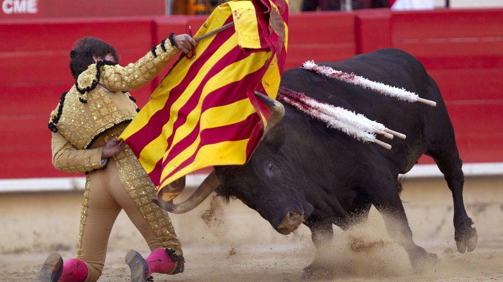 Foto: El torero Antonio Barrera luce una muleta con los colores de la 'senyera' durante el festejo celebrado en la Monumental de Barcelona en 2011. (EFE)