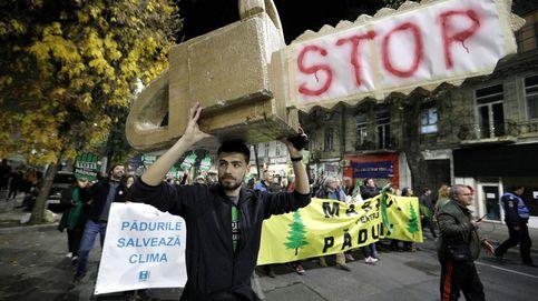 La mafia maderera convierte a Rumanía en el Salvaje Oeste: Estamos destrozadas