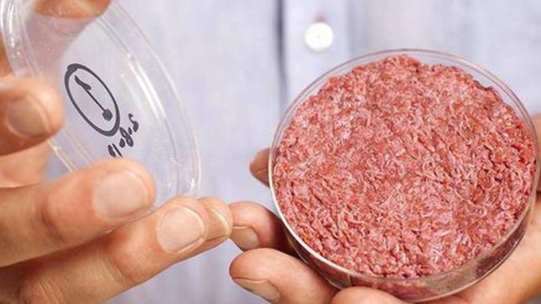 Hamburguesa sintética creada por la Universidad de Maastricht (Cultured Beef).