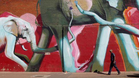 La mariposa de la lavanda y arte urbano en Johannesburgo: el día en fotos