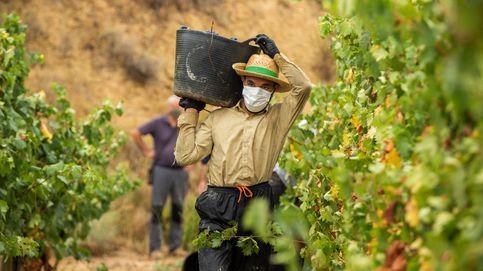 El 10% de la población rural en España ha nacido en el extranjero