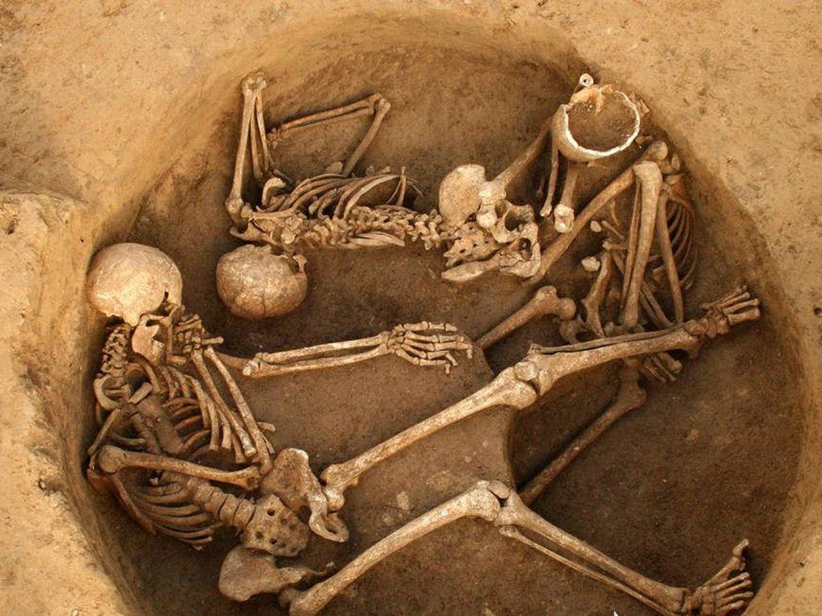 Foto: Inhumaciones de Gougenheim.