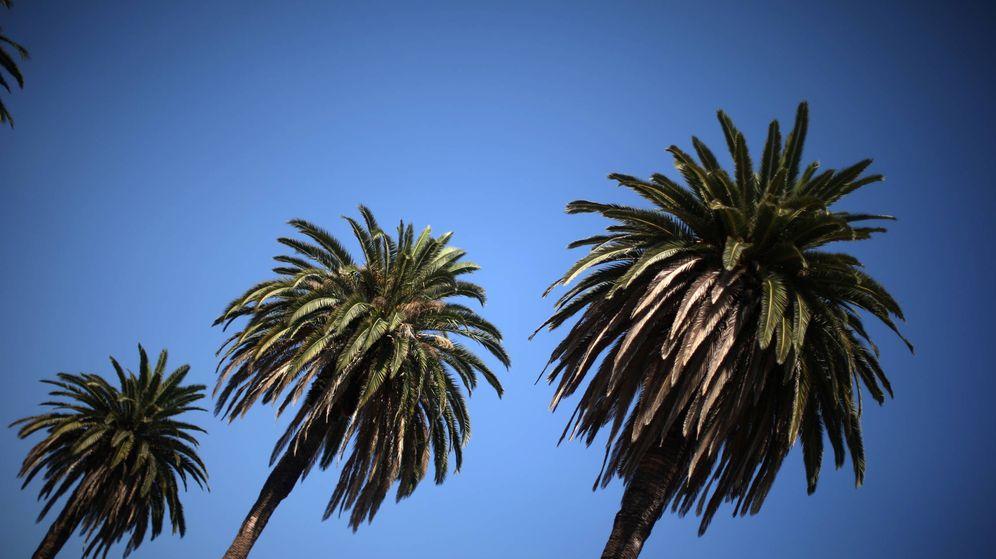 Foto: Los Ángeles. (Reuters)
