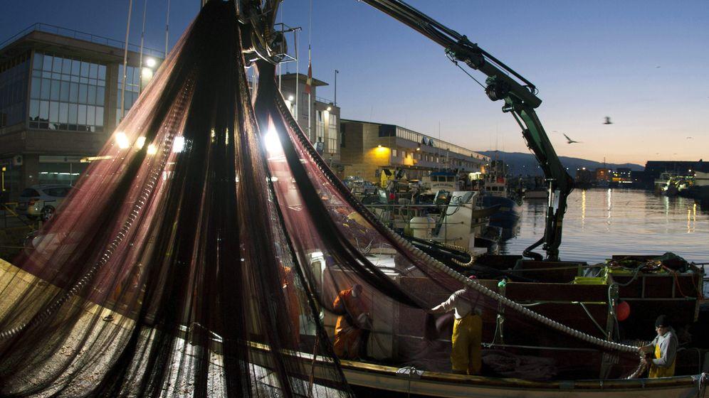 Foto: Imagen del Puerto de Vigo. (EFE)