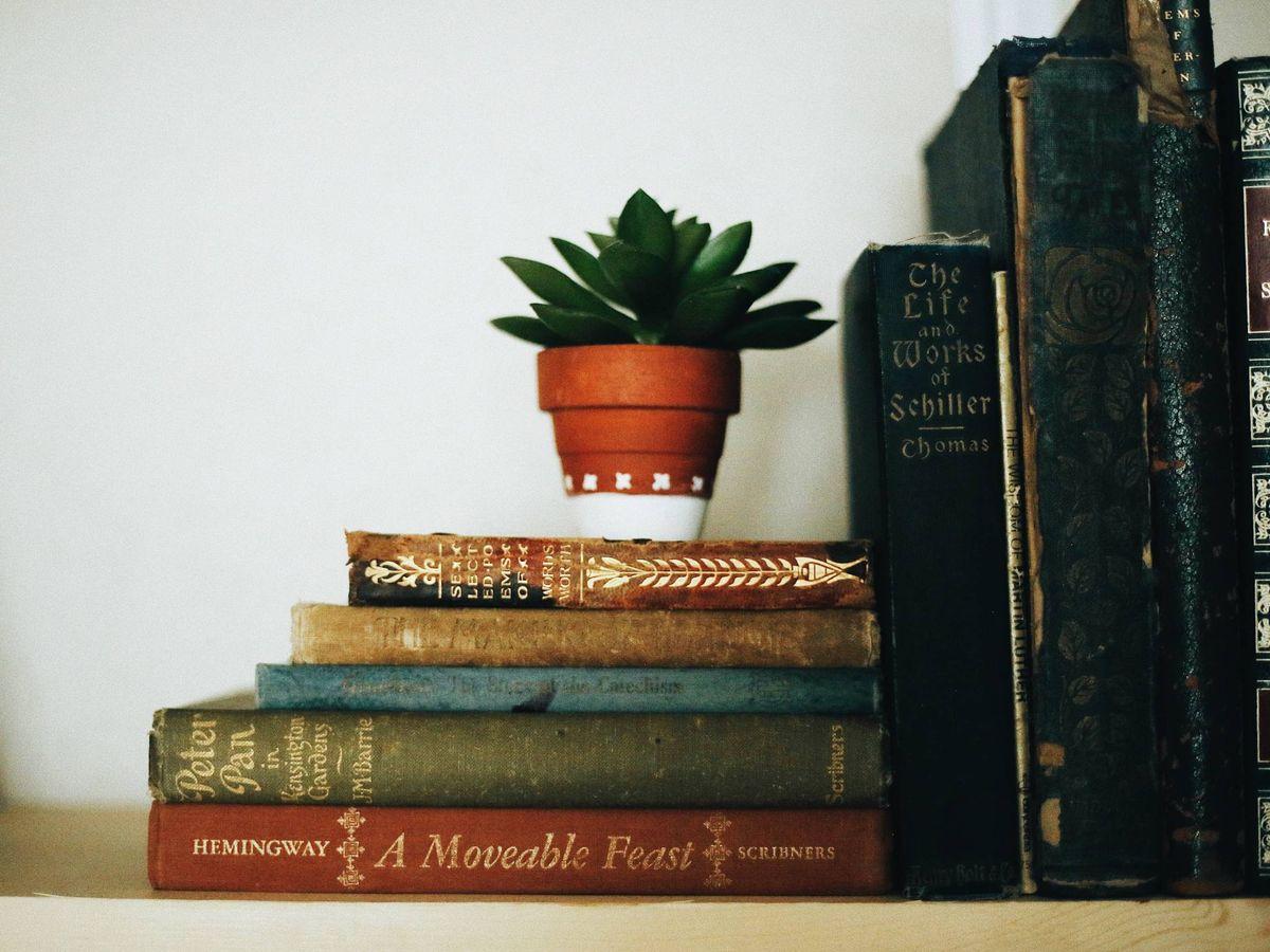 Foto: Ideas de Pinterest para colocar tus libros en la estantería. (Fallon Michael para Unsplash)