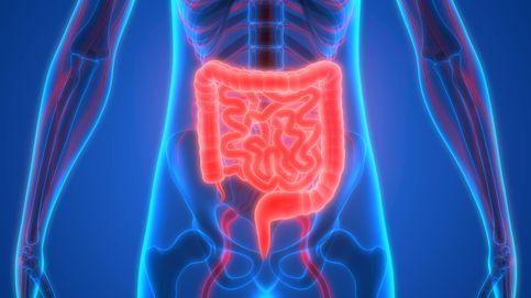 La importancia de la microbiota para adelgazar y cómo detectar su estado