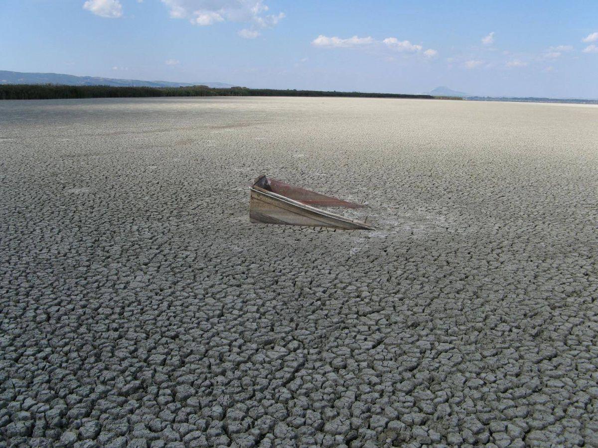 Foto: El lago Volvi en Grecia que se seca temporalmente como consecuencia de el riego excesivo en el sector de la agricultura (junto con los efectos del cambio climático). Se trata de uno de los ejemplos de sistema acuático puesto en riesgo por la ectividad