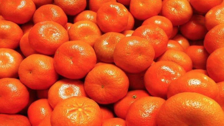 Mandarinas de la variedad patentada Nadorcott