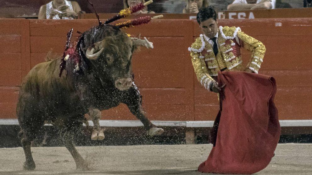 El Constitucional anula la lidia sin muerte de la ley de toros balear