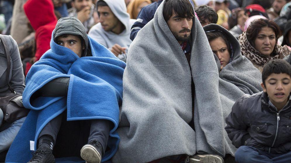 Foto: Varios inmigrantes esperan en la frontera entre Eslovenia y Austria. (Efe)