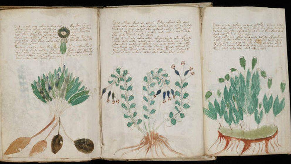 El misterio del manuscrito Voynich: lo que se ha descubierto