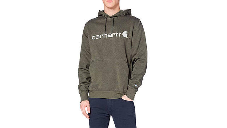 Carhartt Force Delmont Graphic Hooded Sweatshirt
