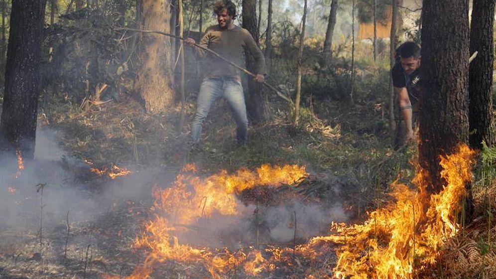 Foto: Desactivado el incendio forestal en Rianxo, A Coruña (Efe)