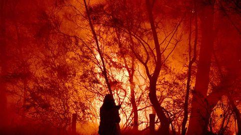 La última década puede ser la más caliente de toda la historia
