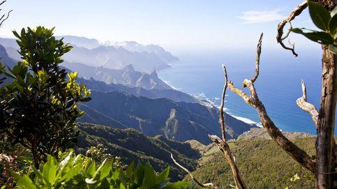 Tenerife, a oscuras: un apagón general corta el suministro eléctrico en toda la isla