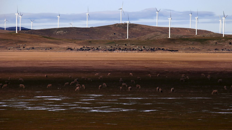 El Gobierno prepara la ejecución masiva de avales por proyectos fallidos de renovables