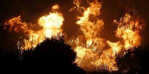 Foto: El incendio de Málaga está estabilizado y con perspectivas favorables de evolución