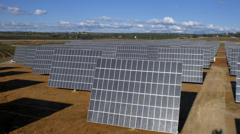 Foto de archivo de una planta fotovoltaica. (EFE)