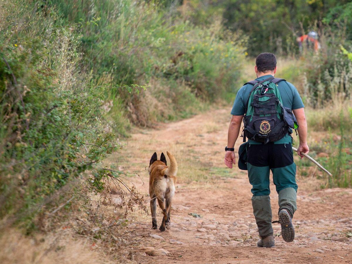 Foto: Los agentes del Seprona salvaron la vida a los animales (EFE/Raquel Manzanares)