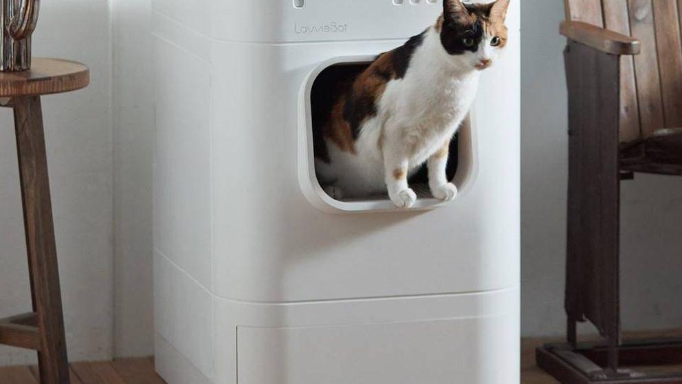 Un arenero inteligente para gatos: ¿el gran 'bombazo' tecnológico del Mobile es esto?