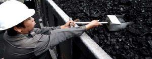 ¿Es el carbón el nuevo oro de 2011?