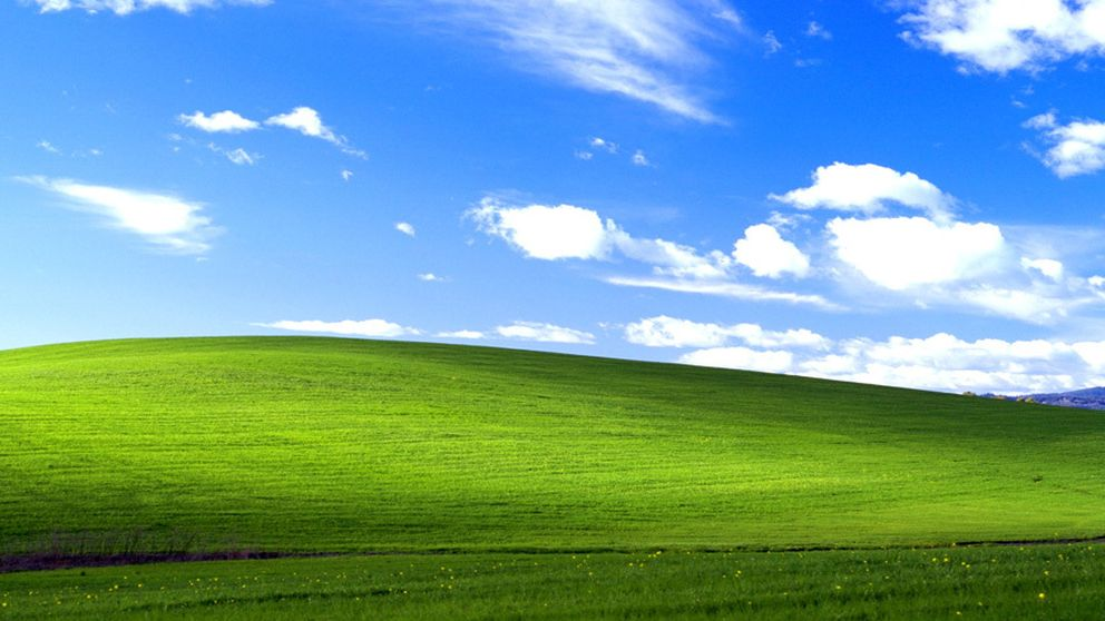 'Bliss', el fondo de escritorio de Windows XP, esconde un romance