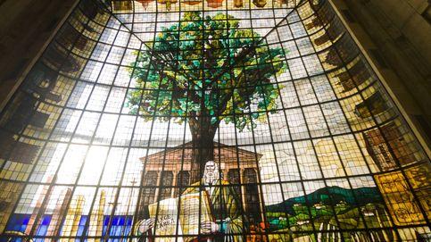 Breve historia de un árbol centenario