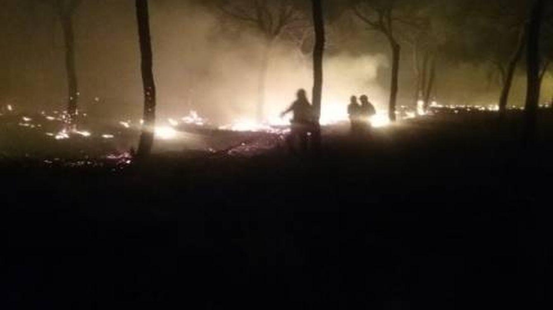 Un incendio forestal en Moguer (Huelva) obliga a desalojar el Parador de Mazagón
