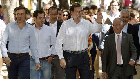 Los papeles de Amat: así funciona la red familiar del presidente del PP Almería