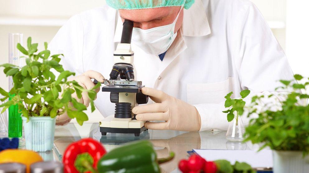 Química en la cocina: la explicación científica de los trucos tradicionales