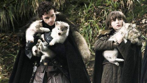 ¿Qué fue de los lobos Stark, los otros protagonistas de 'Juego de tronos'?