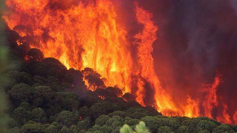 La UME se suma a la extinción del incendio de Nerva, en Huelva: 22 personas desalojadas