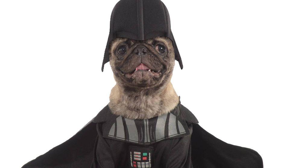 Maquillaje, drones y disfraces para perros: el otro imperio Star Wars