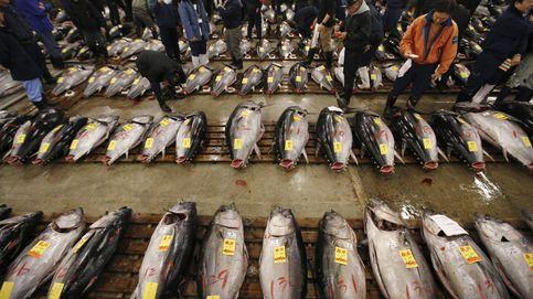 El escándalo del atún: cómo la industria ha conspirado para subirte los precios