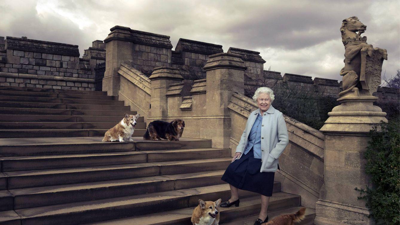 La dolorosa pérdida de la reina Isabel: muere Vulcano, uno de los dos perros que le quedaban