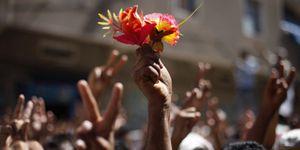 Foto: La Primavera Árabe se llena de brotes verdes