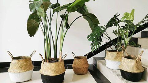 Cestas sostenibles para decorar los rincones de tu casa de forma ecológica