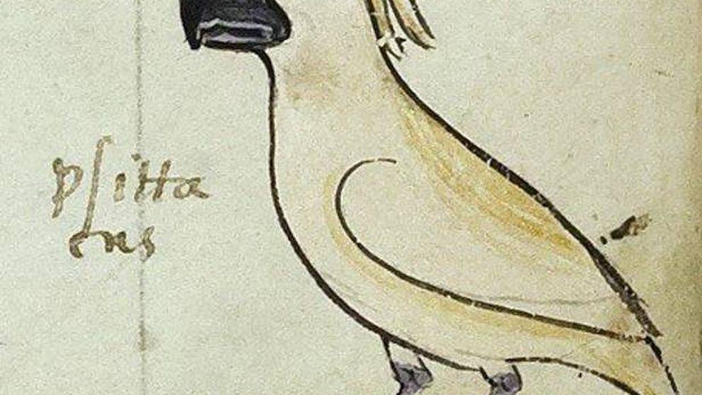 El misterio del manuscrito del siglo XIII que puede cambiar la historia