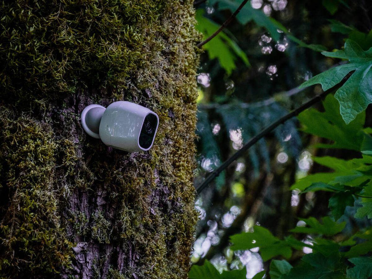 Foto: Las mejores cámaras wifi para exterior que encontrarás en Amazon (Alan Rodriguez para Unsplash)