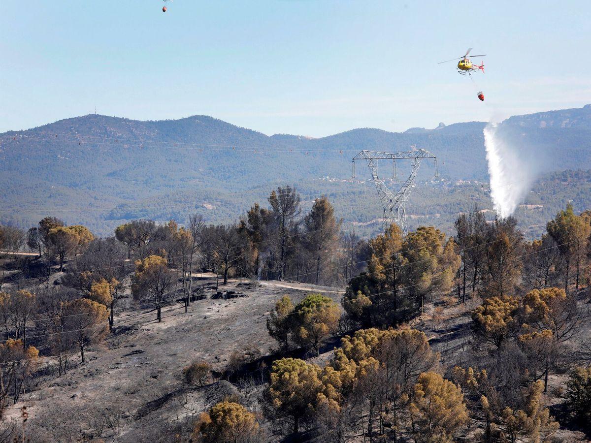 Foto: Sigue activo el incendio de Castellví de Rosanes. (EFE)