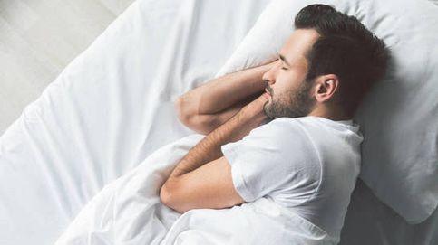 El oso, el lobo, el león o el delfín: ¿cuál es tu cronotipo a la hora de dormir?