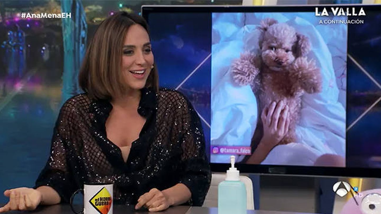 Tamara Falcó, en 'El hormiguero'. (Cortesía)
