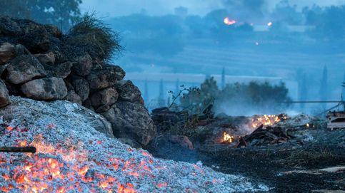 Ola de calor provoca incendios en Israel
